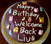 Chocolate Cake decorated for Liv